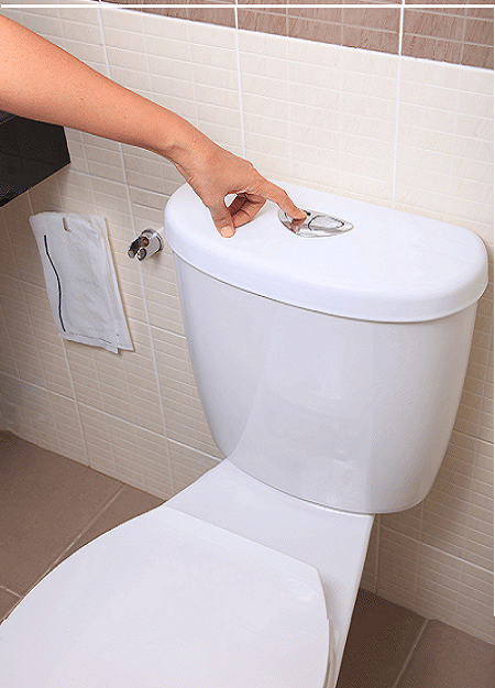 Top 10 Best Flushing Toilets (Jan. 2020): Review & Buyer's Guide