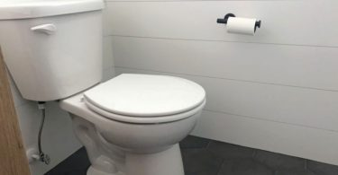 types of toilet flush systems