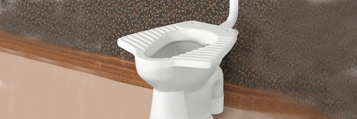 Anglo - Indian Type Toilet