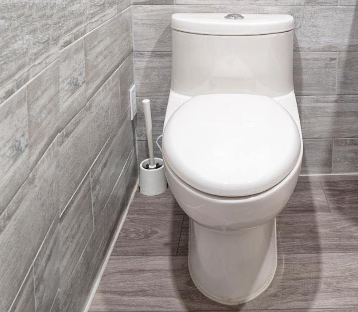 One Piece Toilets buying guide