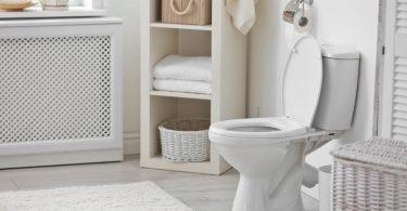 best toilet under 200